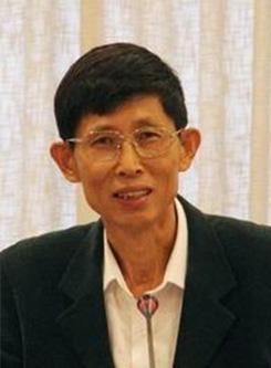 岳庆平 教授