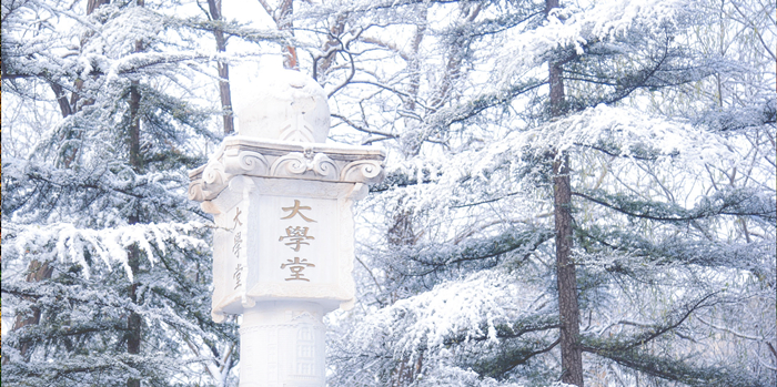 美丽燕园,冬日雪景